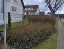 Travaux fleurissement 2008_24